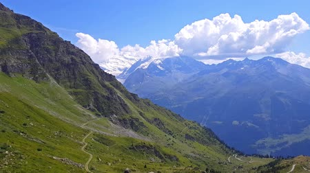 Scenic summer view of the green grassy hill mountain flower meadows at the snowy peaks of Alps, Switzerland Wideo