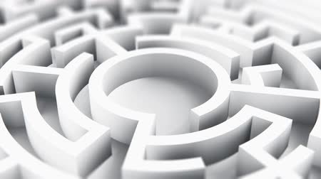 Creative abstract success, perspective vision, marketing, strategy, finding solution and motivation business communication concept: 3D render illustration of round circle labyrinth maze on white background Wideo