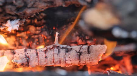 bbq grill : burning wood. background of fire