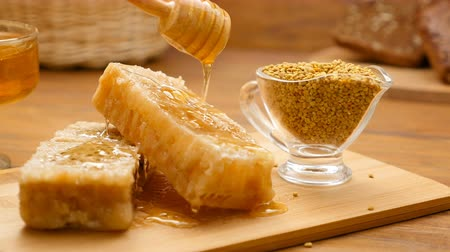 ложка : Composition of honey, honeycomb and bee bread. Honey pouring