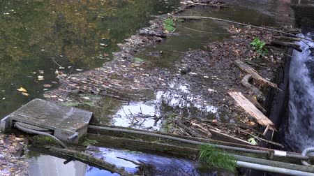 prejudicial : Garbage gathered at the river crossing, neckar Stock Footage