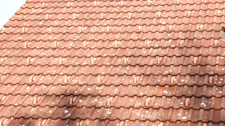 dekarz : tiled roof of the house