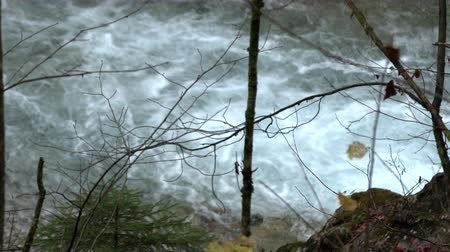 急流 : Raging mountain river slow motion, germany