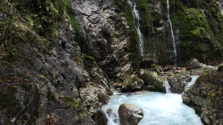 bavorské : Mountain waterfall in bavaria, slow moution, germany Dostupné videozáznamy