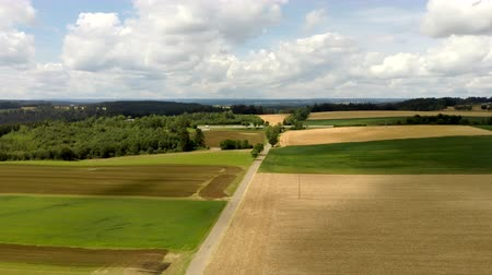 kolza tohumu : wheat field with a highway in the background in germany Stok Video