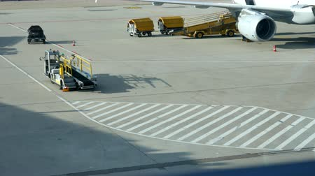 zaparkoval : loading baggage of passengers on a plane at the airport