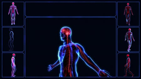 gergin : Human nervous system Stok Video