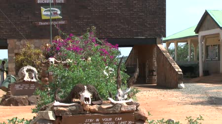 realizing : Safari Kenya Tsavo East