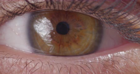 kapatmak : Eye Opening Blinking Macro Close Up Slow Motion 200fps 4K