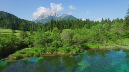 bird ecology : AERIAL VIEW: flight around Kranjska Gora. camera moving right to left