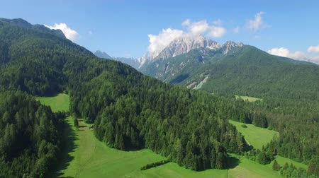 slovenya : AERIAL VIEW: flight around Kranjska Gora. camera moving forwards Stok Video