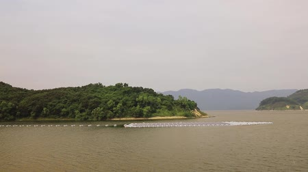 para a frente : Solar panels on water at  Plover Cove Reservoir