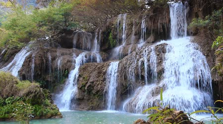 floresta tropical : tee lu su waterfall in thailand
