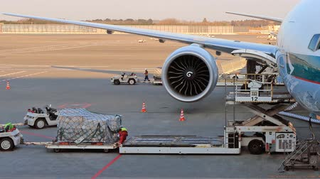 load and unload baggage on conveyor commercial airline airplane