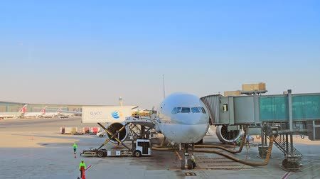 Baggage handlers ready to load and unload cargo at HAMAD INTERNATIONAL AIRPORT, QATAR.