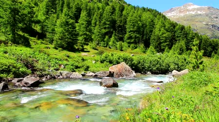 alpi : Grski stream in the Alps