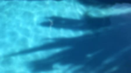 yüzme havuzu : Swimming Pool Sunshine Defocus Slow Motion Stok Video
