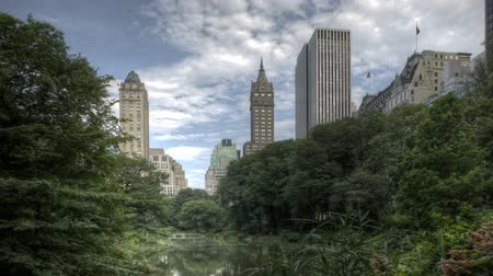 américa central : HDR Timelapse Pan-Shot Central Park Trees and New York City Skyline in Background Vídeos