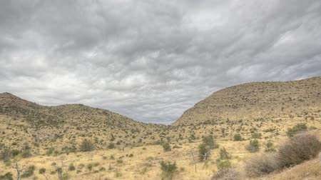 prominent : HDR Timelapse Coronado National Forrest Arizona with clouds passing by Stock Footage