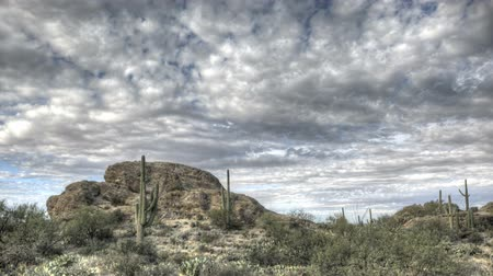 prominent : HDR Timelapse Javelina Rocks Saguaro NP Arizona with clouds passing by