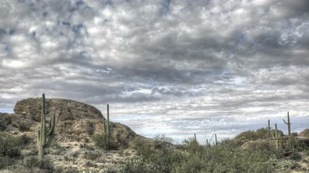 kaktusz : HDR Timelapse Javelina Rocks Saguaro NP Arizona with clouds passing by