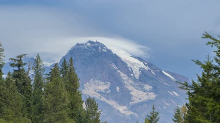 montar : Timelapse of clouds passing the peak of Mt Rainier with trees in the foreground