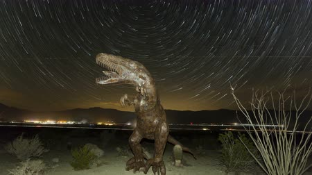 startrails : BORREGO SPRINGS, CA, USA - MAY 23,2014: 4K Time lapse tilt shot down up of prehistoric dinosaur in the Anzo Borrego desert near Borrego Springs with startrails in the sky at night
