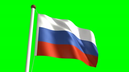 birlik : 3D Russia flag video (seamless & green screen)