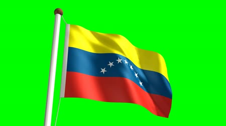 bandeira : 3D Venezuela flag video (seamless & green screen) Vídeos