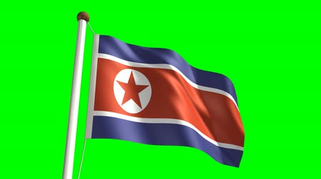 north korean flag : 3D North Korea flag video (seamless & green screen) Stock Footage