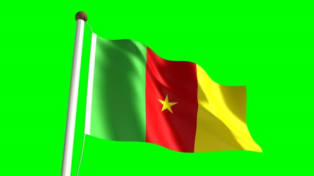 цветной : Cameroon flag (seamless & green screen)