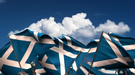 birlik : Waving Scottish Flags (seamless & alpha channel) Stok Video