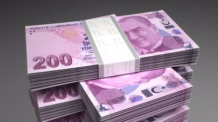 lira : Stack of Turkish Lira Stok Video