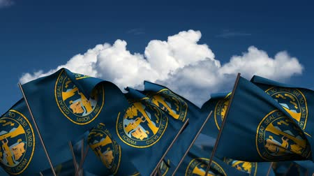 render : Waving Nebraska State Flags (seamless & alpha channel) Stok Video