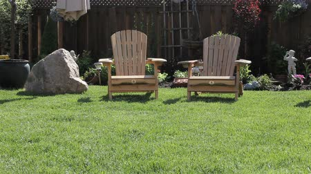 comfortable : Summer in a backyard