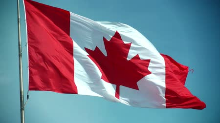 kanada : Canadian Flag - Slow Motion