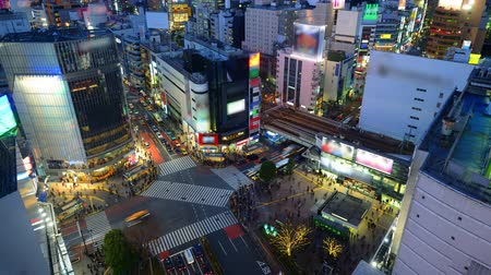 tokio : Shibuya District of Tokyo, Japan. Wideo
