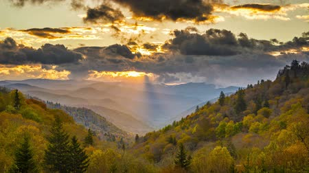 colline : Parco nazionale di Great Smoky Mountains in Tennessee, Stati Uniti