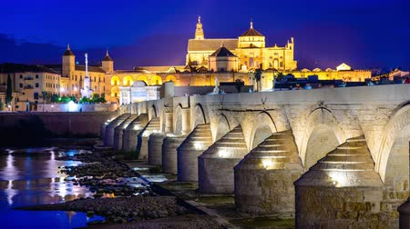 İspanya : Cordoba, Spain old town skyline at the Mosque-Cathedral and Roman Bridge. Stok Video