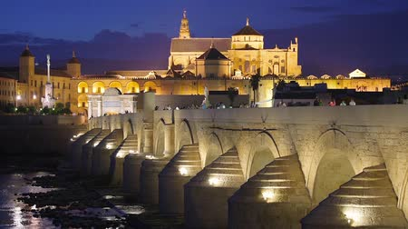 falu : Cordoba, Spain cityscape at the Roman Bridge and Mosque-Cathedral. Stock mozgókép