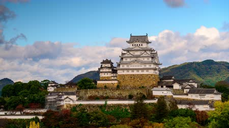 japan : Himeji, Japan skyline at the castle. Stock Footage