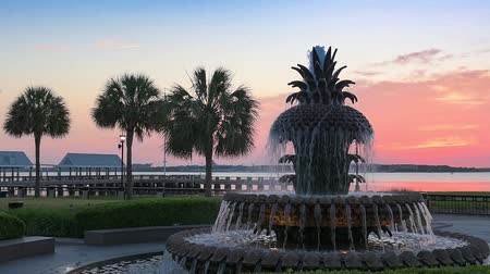 güney : Charleston, South Carolina, USA at the Waterfront Park Pineapple Fountain.