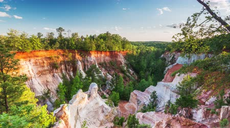 ga : Providence Canyon Park in Georgia, USA. Stock Footage