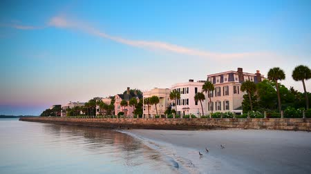 güney : Charleston, South Carolina, USA at the historic homes on The Battery. Stok Video