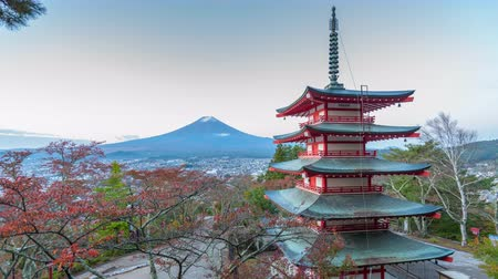 tokio : Mt. Fuji viewed from behind Chureito Pagoda. Wideo