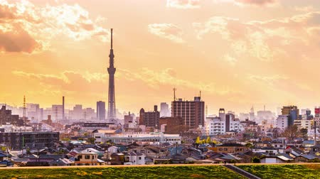 kanto district : Tokyo, Japan skyline with Skytree Tower. Stock Footage