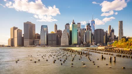 locatie : New York City skyline op de East River Stockvideo