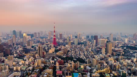 kanto district : Tokyo, Japan Skyline and Tower. Stock Footage