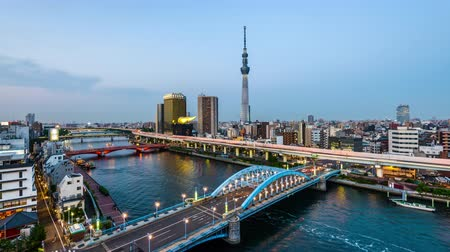 Tokyo, Japan skyline in the Sumida district day to night. Wideo