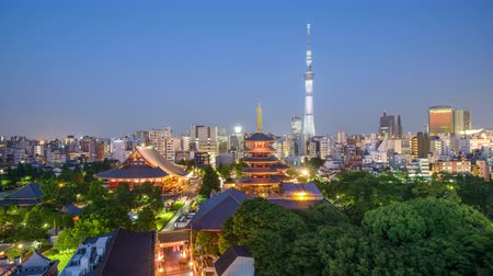 Tokyo, Japan skyline and towers day to night.